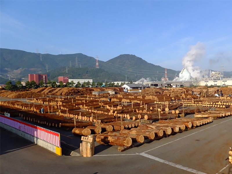 株式会社 伊万里木材市場